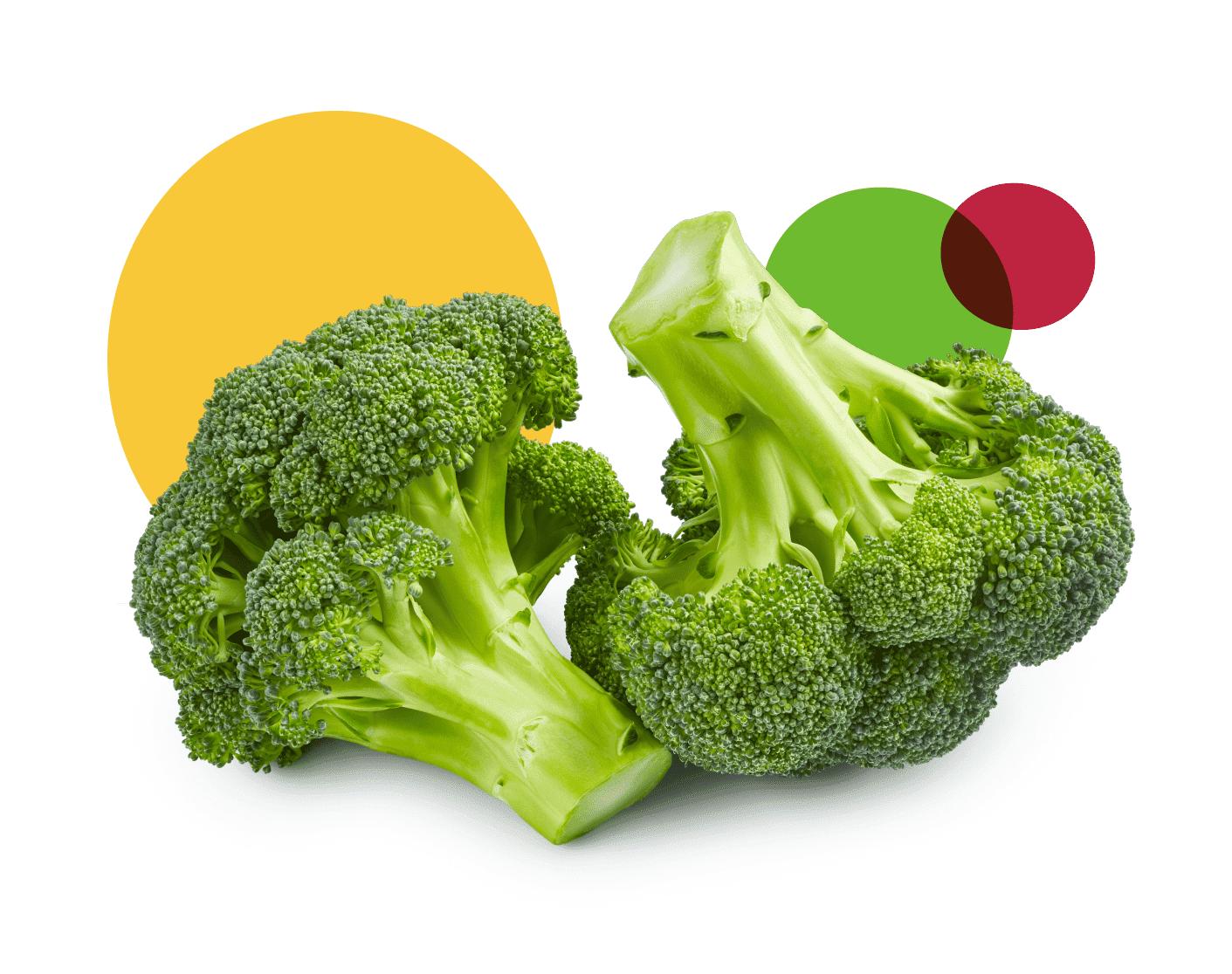 Pignatarosrl.com_Broccoli_verdi